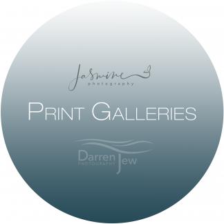 Print Galleries
